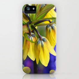 Crown imperial flower (yellow, blue, orange) iPhone Case