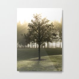 Heavenly tree Metal Print