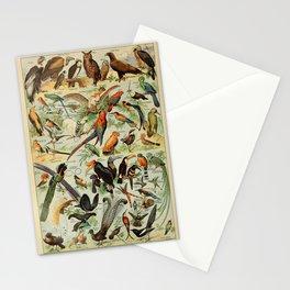Adolphe Millot - Nouveau Larousse Illustré - Oiseaux A (Birds) (1910) Stationery Cards