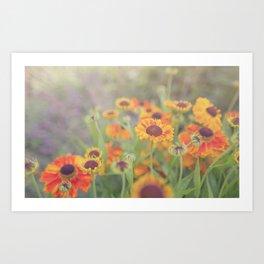 Flowers in the Summer Art Print