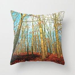 Trees in autumn light Throw Pillow