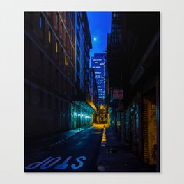 Back Alley Beauty Canvas Print