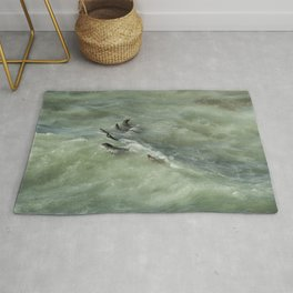 Sea Lions Cavorting in a Green Sea Rug