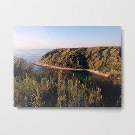 Late colors of island Metal Print