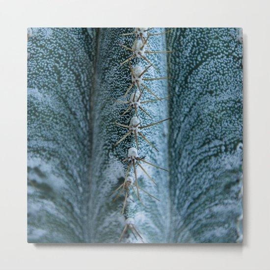 Cactus 05 Metal Print