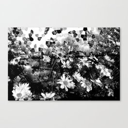 Sunspots 2 Canvas Print