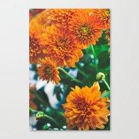 Flower No. 2 Canvas Print