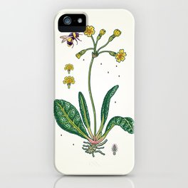yellow cowslip and bee iPhone Case