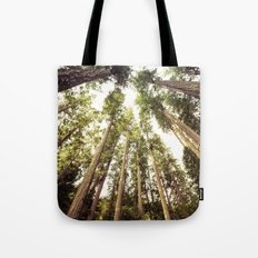 Forest Sky - The Canopy Tote Bag