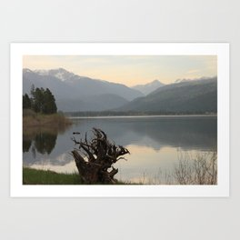 Vallecito Art Print