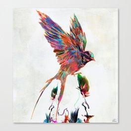 Aurical Canvas Print