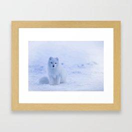 Arctic Fox Blend Framed Art Print