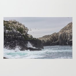 The Farne Islands Cliffs Rug