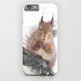 Little squirrel - smack! #decor #society6 #buyart iPhone Case