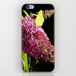 Buddleia with Butterfly iPhone Skin