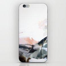 1 3 1 iPhone Skin