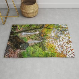 Grey Mares Tail Waterfall Wales Rug
