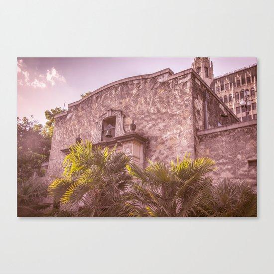 Palm Tree Summer - The Alamo Canvas Print