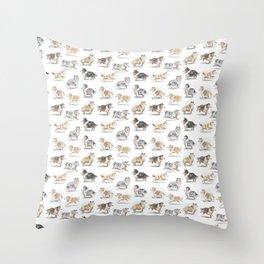 The Rough Collie Throw Pillow