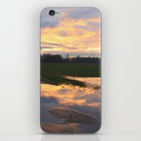 mirror iPhone & iPod Skins featuring Mirror by friz sala