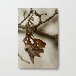 Skeletal remains Metal Print