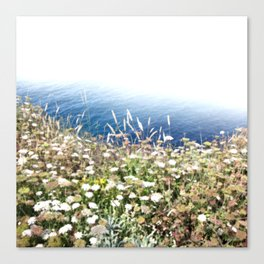 Flowers by the cliff Canvas Print