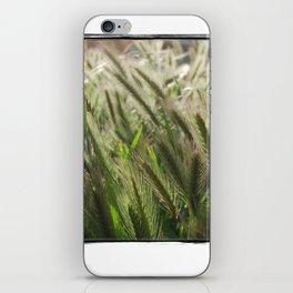 Soft Breeze iPhone Skin