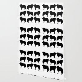 Great Pyrenees: Shadows Wallpaper