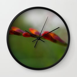 Crocosmia Up Close Wall Clock