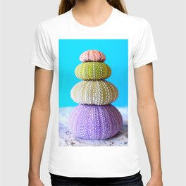 Oursin color coquillage T-shirt