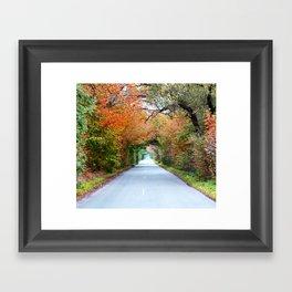 Autumn tunnel Framed Art Print