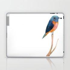 Blue-Fronted Redstart Laptop & iPad Skin