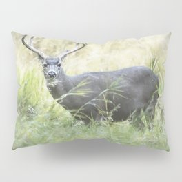 Stag in Yosemite Pillow Sham