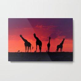 Magic giraffe Masai Mara Kenya (WorldNatureFund photo) Metal Print