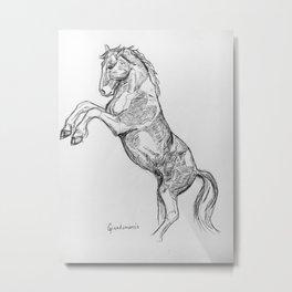 """ Rearing Horse"" Metal Print"