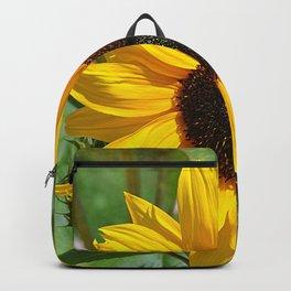 Sunflower nature photo Backpack