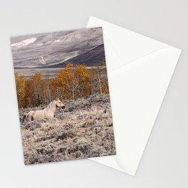 Palomino Roaming the High Plains Stationery Cards
