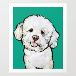 Gracie the Bichon Art Print