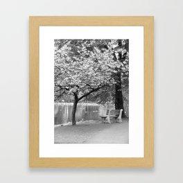 Spring Park Bench Framed Art Print