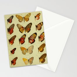 Vintage Butterfly Print - African Mimetic Butterflies (1910) - Elegant Acraea Butterfly & Mimics Stationery Cards