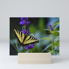 Butterfly on a Purple Flower Mini Art Print