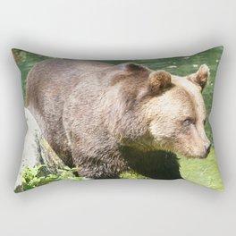 Bear_2015_0302 Rectangular Pillow