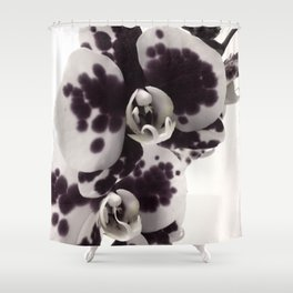 Orchid Monochrome Shower Curtain