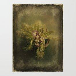 Little Winter Flower Poster