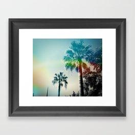 Palm trees of Barcelona Framed Art Print