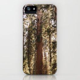 Sequoia National Park XIV iPhone Case