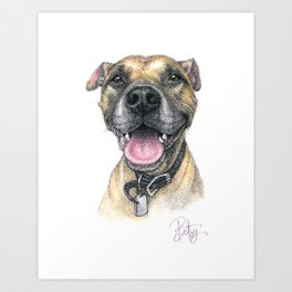 """Winston Xavier"" the Rescue Boxer Pitbull by Betsy VanDeusen Art Print"