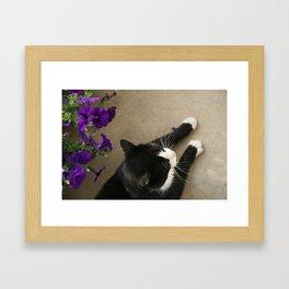 -test image- Framed Art Print