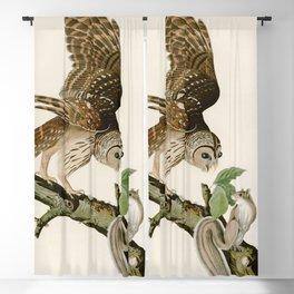 Barred Owl - John James Audubon's Birds of America Print Blackout Curtain