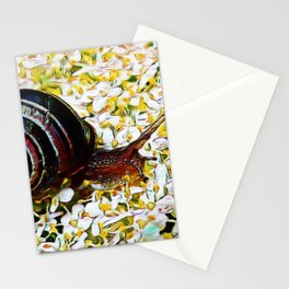 Mellow Mollusk | Painting Stationery Cards